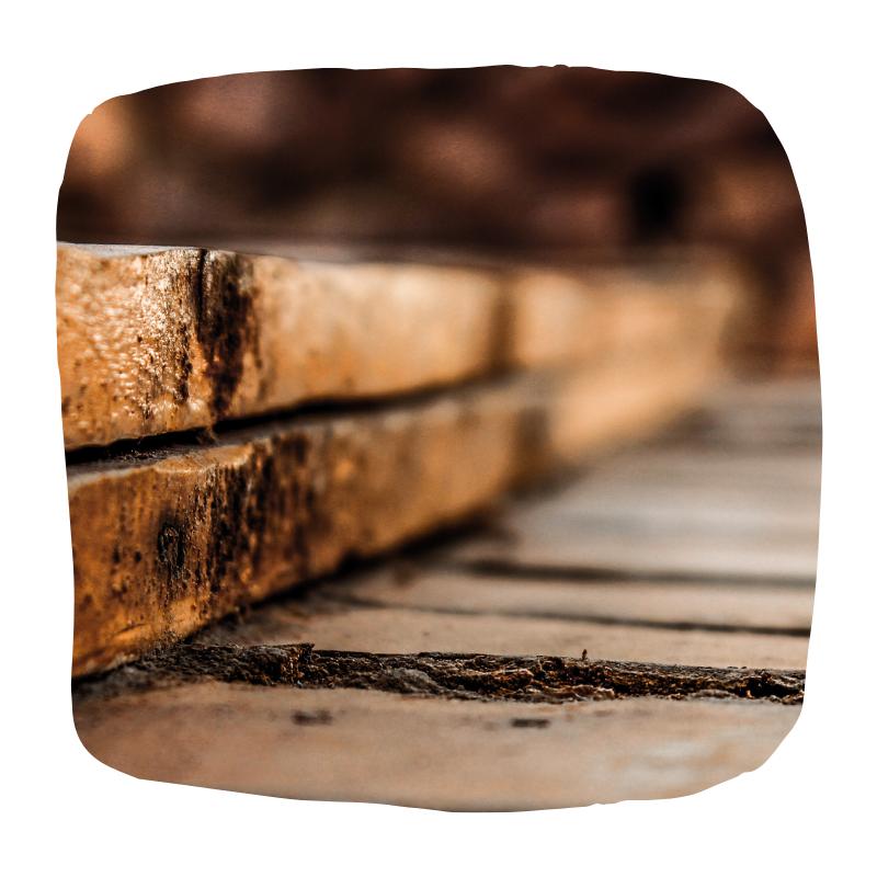 duurzaam materiaal hout
