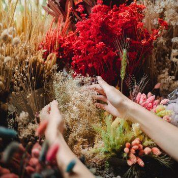 5 Pampasgras en droogbloemen